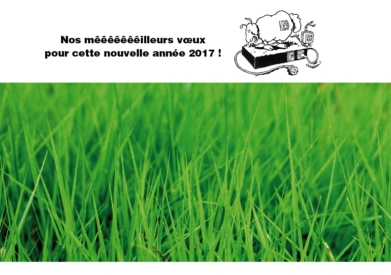 carte-voeux-2017